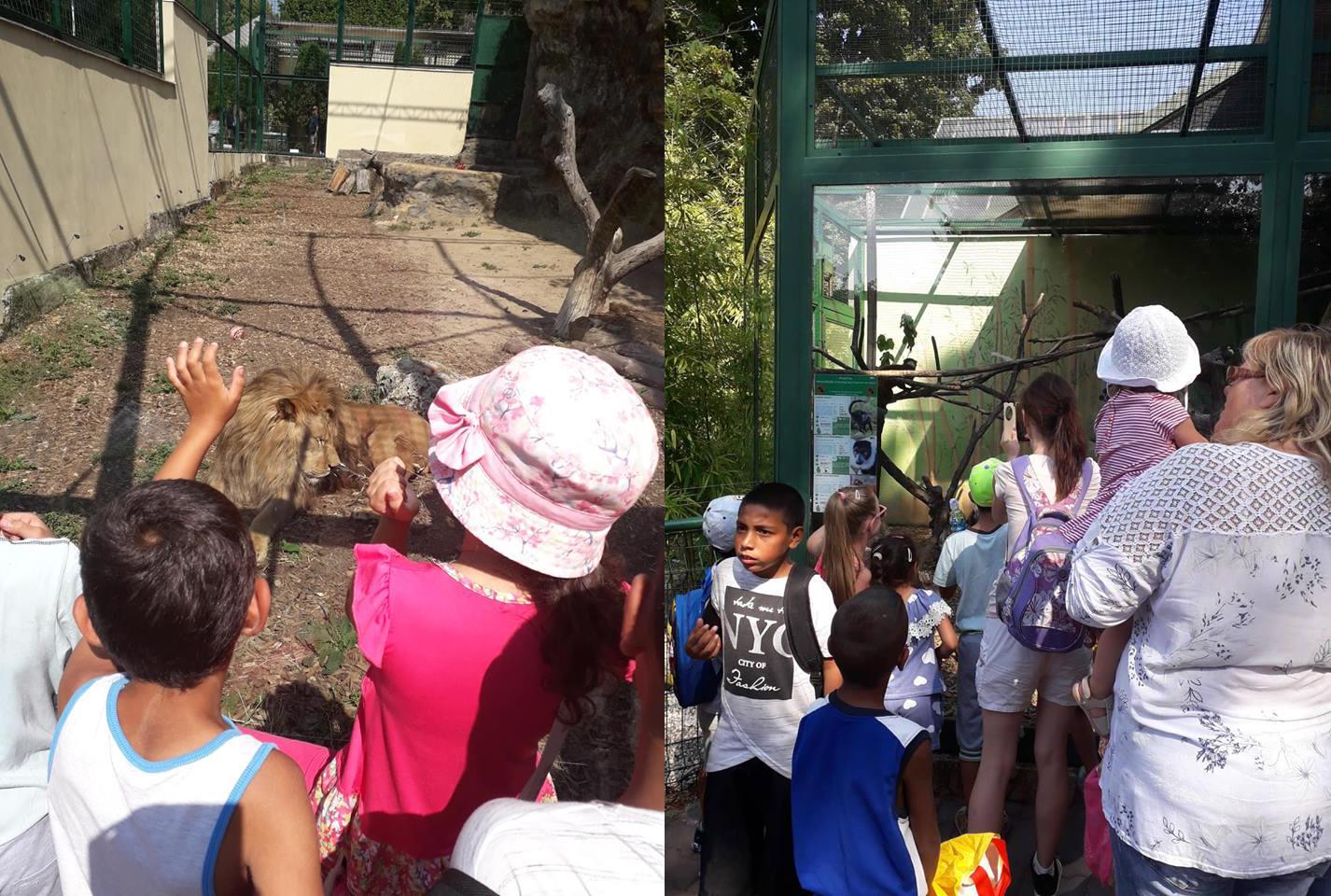 Výlet Bojnice (Preventívna aktivita zameraná na spoznávanie a chránenie ohrozených druhov zvierat)