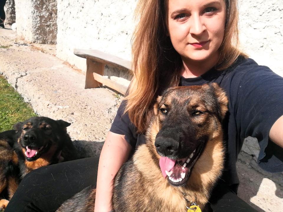 V útulku máme 32 psíkov, ktorí hľadajú domov či aspoň dočasku