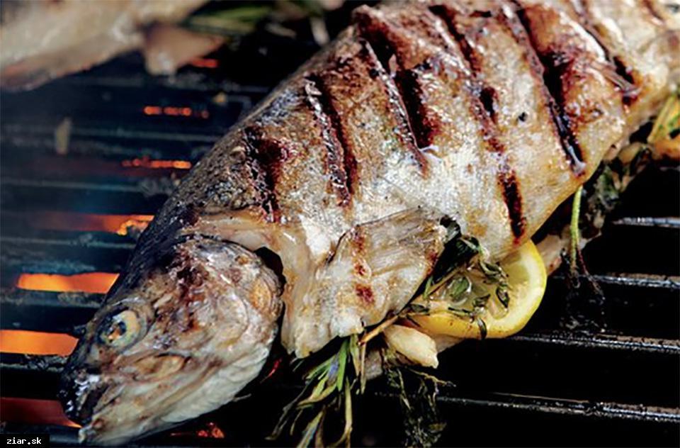 obr: Na Slávnosti vína grilované pstruhy priamo od žiarskych rybárov
