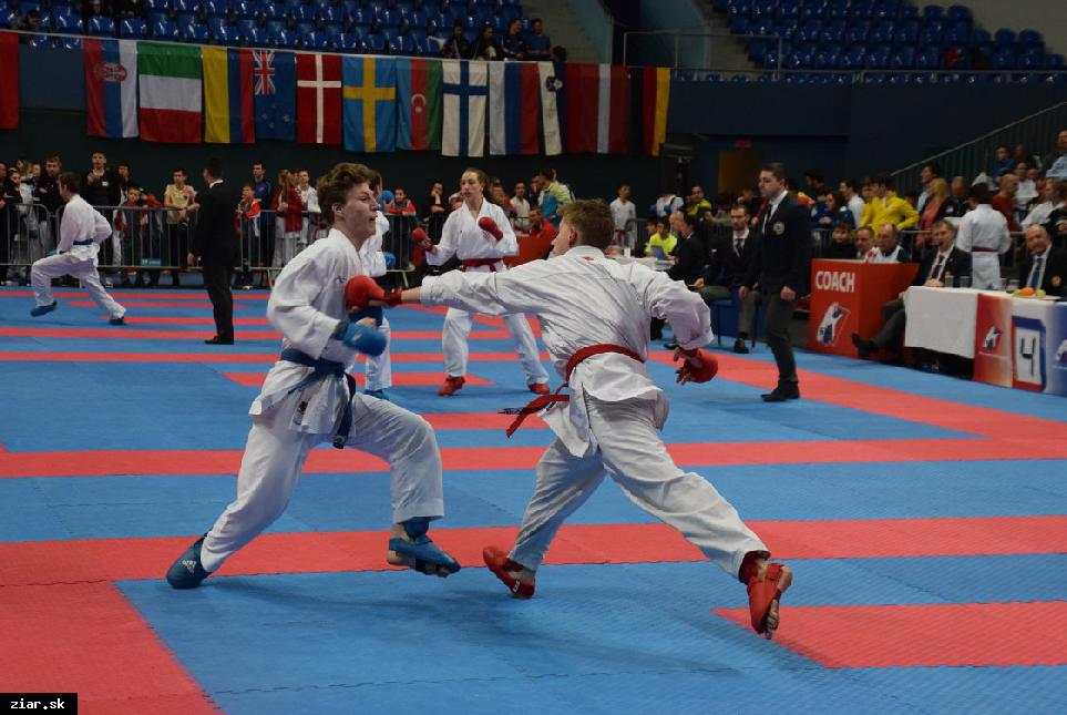 obr: Grand Prix Slovakia v karate