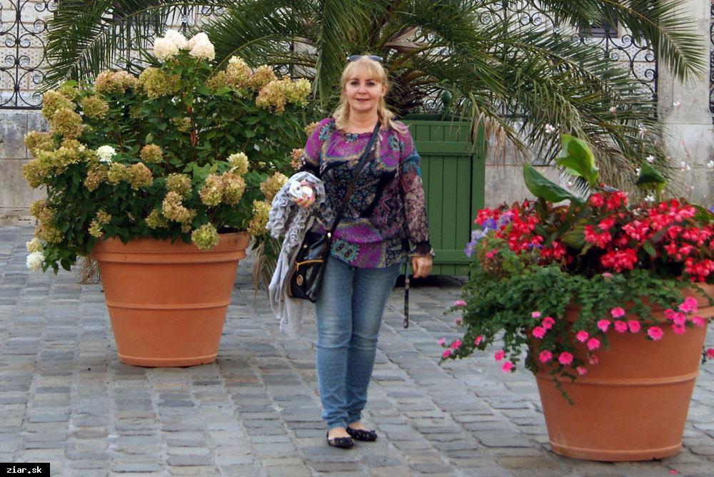 obr: Obľúbená autorka Katarína Gillerová pracuje na svojom trinástom románe