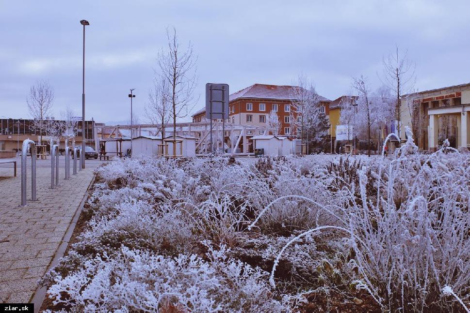 Zima pomaly poľavuje. Aký bude koniec februára?