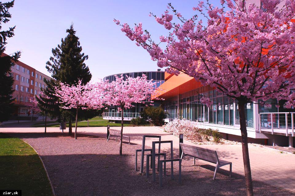 obr: Nastávajúce dni budú pripomínať predčasnú jar