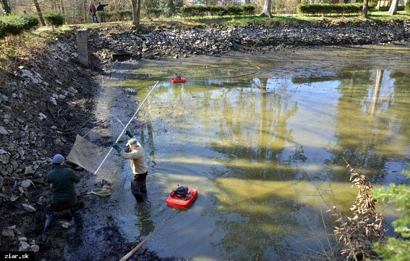 obr: O jazierka v žiarskom parku sa budú starať rybári