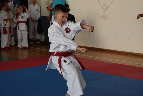 karate_hungaria_open_oktober_2018.jpg