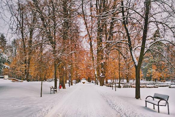 zime-nepovedala-posledne-slovo-pocasie-januar.jpg
