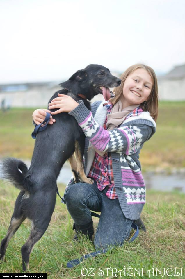 obr: Opusteným psíkom podali pomocnú ruku