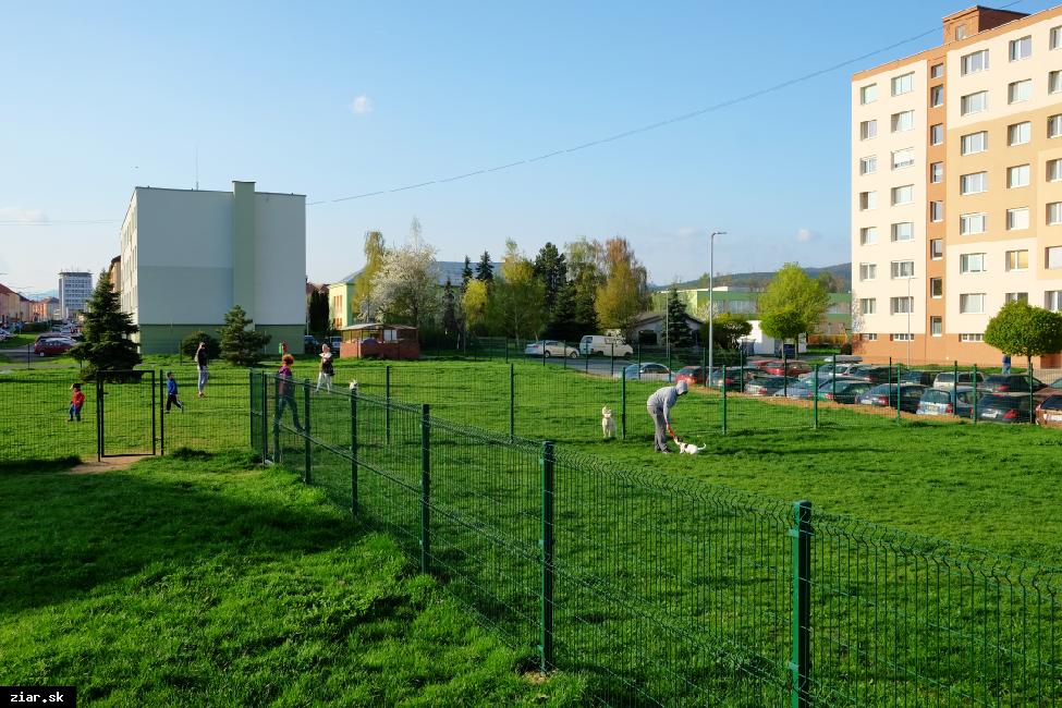 obr: Už čoskoro mesto sprístupní agility park pre psov