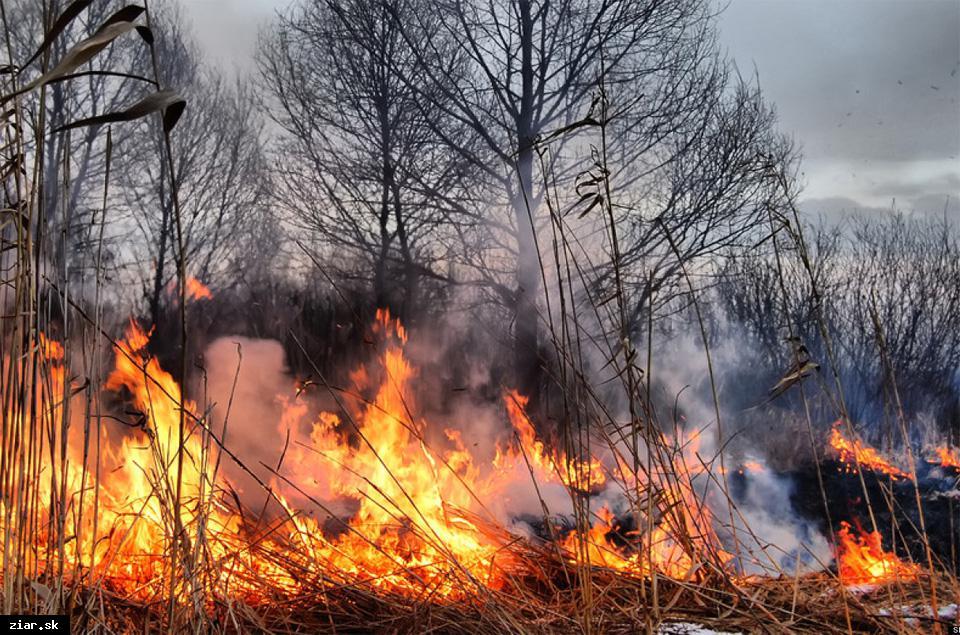 obr: Vypaľovanie suchých trávnatých porastov je prísne zakázané